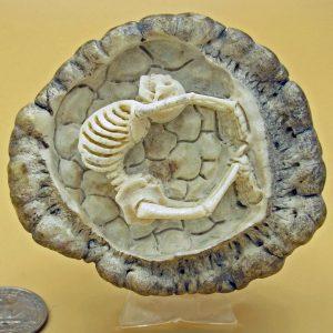 Skeleton carved from moose antler crown