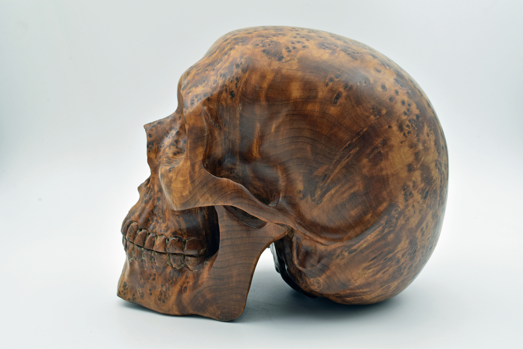 Geoclassics burl wood skull carving