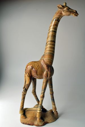 Picture jasper giraffe
