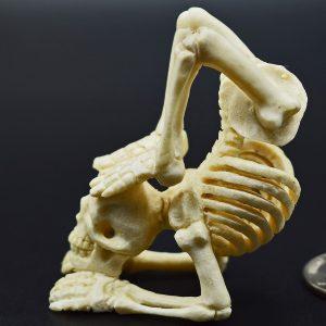 Skeleton doing yoga carved from moose antler