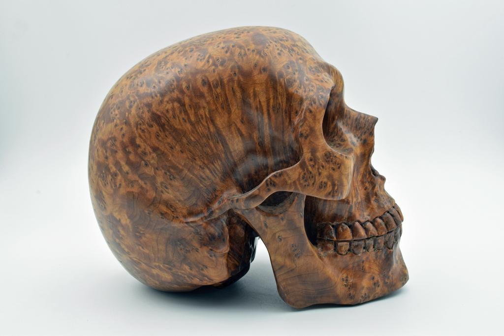 Geoclassics burl wood skull carving