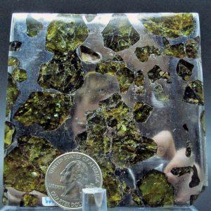 Fukang pallasite meteorite slice 130.3g