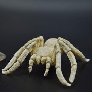 Tarantula carved from moose antler
